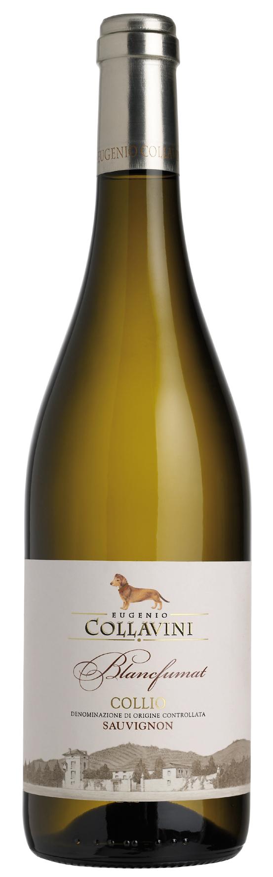 2015 Sauvignon BlancFumat Collio DOC Collavini